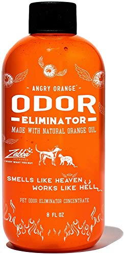 Angry Orange Pet Odor Eliminator for Dog and Cat...