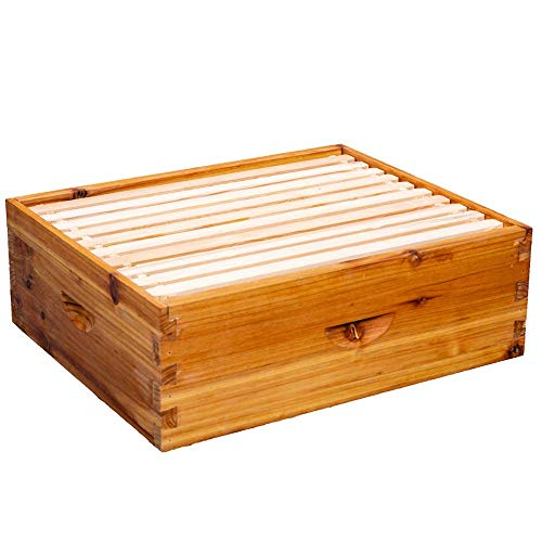 8-Frame Beehive Box Langstroth Medium Super Bee Box for Sale Wax Coated Bee Hives Includes Wooden Frames & Waxed Foundations (Unassembled)