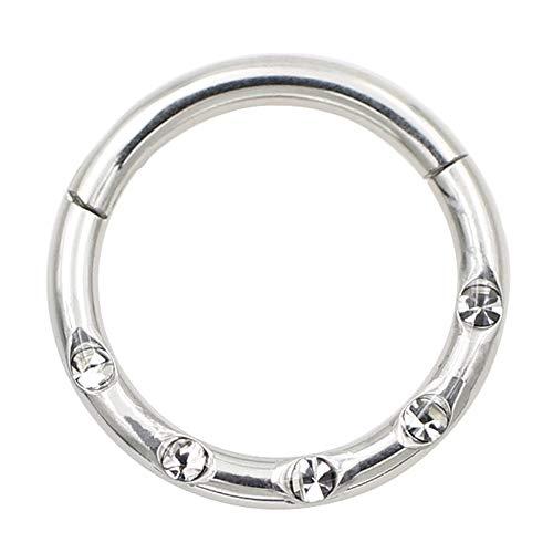 14g Cartilage Earring Hoop 10mm Helix Earring Surgical Steel Hoop Earrings for Women Nose Rings Hoop Silver Nose Ring 14 Gauge Nose Hoop Conch Earring Lip Rings Nipple RingsNose Piercing Jewelry