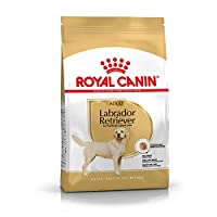 Labrador Retriever Adult 12 kg Bag ROYAL CANIN Complete Food for Labrador Adult from 15 months. Daily ration and composition, see bag. Labrador Retriever Adult Dog Food Labrador Retriever Adult ROYAL CANIN is specially designed for the Labrador Retri...