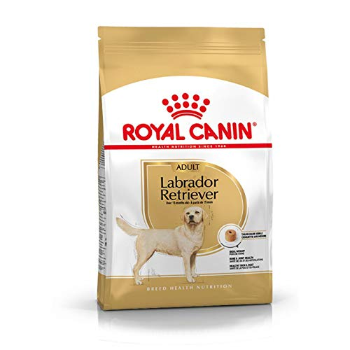 verdecora Royal CANIN Labrador Retriever 30 12KG