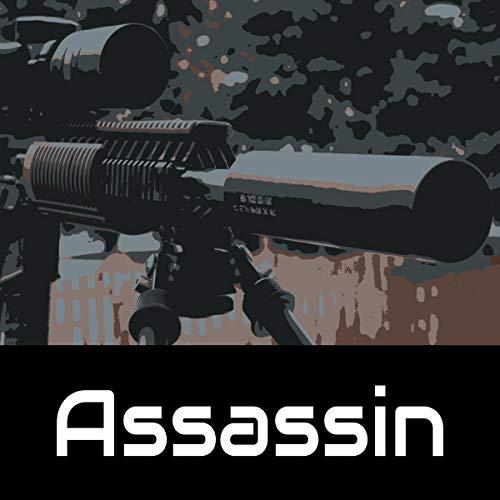 Assassin cover art