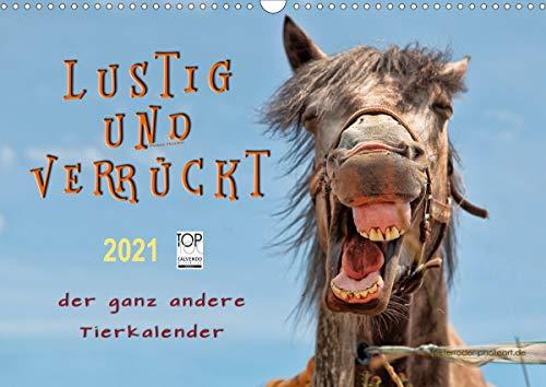 Lustig und verrückt - der ganz andere Tierkalender (Wandkalender 2021 DIN A3 quer)