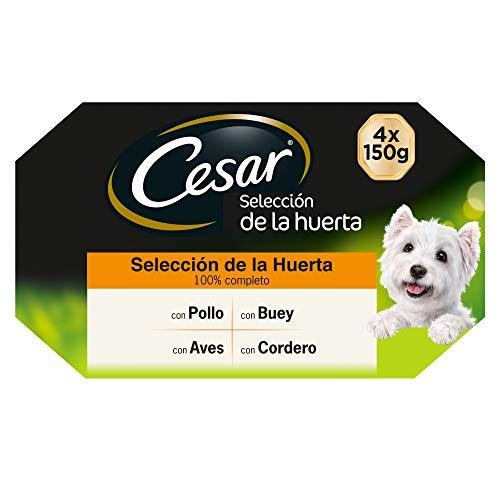 Cesar Multipack de Tarrinas de Comida Húmeda para Perros selección en Paté y Gelatina, Sabor Recetas de la huerta (Pack de 6 x 4 tarrinas x 150g)