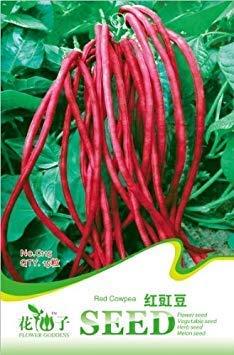 Potseed Graines de légumes Haricots Rouges Angle Caroube Graines de Haricots Longs 15 pcs/Sac Graines d'origine d'emballage pour la Maison et Le Jardin intérieur