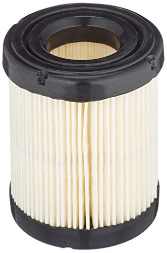 Briggs and Stratton 591583 Air Filter
