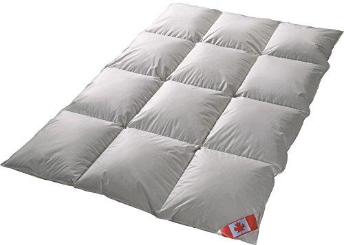 Canadische Daunen extra warme Winter 8-cm Hochsteg Daunen Kassettenstegbett Daunenbett Canada 100% Daune 100% Natur Daunendecke 155x220 cm direkt vom Bettenfachgeschäft