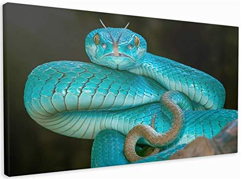 DIY 5D pintura de diamante bordado kits completo Hermosa serpiente Diamond painting grande punto de cruz adulto/niño cristal lienzo art craft for home wall decor gift Square Drill,40x80cm(16x32inch)