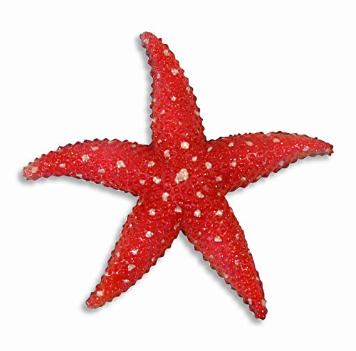 Hand Painted Starfish Star Fish Replica Wall Mount Kid Room Decor Plaque 6' Red