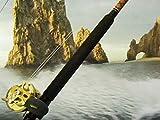 World's Best Billfish Bite- Cabo San Lucas