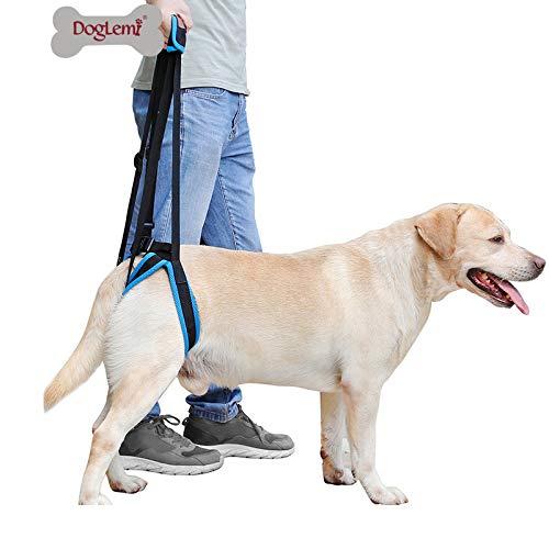 Doglemi - Arnés de elevación portátil para perros con patas traseras débiles para recuperación de cirugía y alivio del dolor