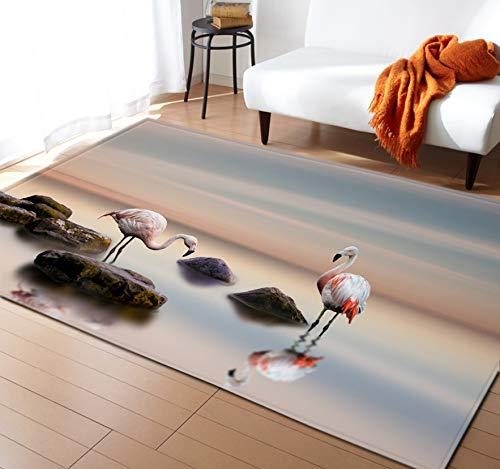 Flamingo Gedruckte Carprt, Moderne Elegante Wohnzimmer-Dekoration, Karikatur-Tierwolldecke, Flexible Polyester-Fußmatte 120cmx170cm