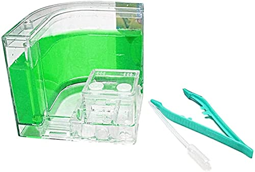 WDSZXH Anschließen von Ameisenburg mit Tubes Box Spielzeug für Kinder Ameise für Studienverhalten von Ameisen innerhalb des 3D-Labyrinths (Farbe: Grün, Größe: 21x11cm)