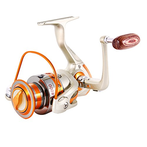 Best Value Microspinning Reel