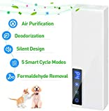 Ionic Air Purifiers Review and Comparison