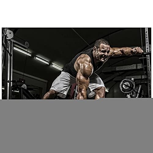 Chtshjdtb Gimnasio Culturismo Musculismo Fitness Art Poster Lienzo Cuadro Cuadro Impresión Sala Decoración del Hogar Regalos - 60X80Cm Sin Marco