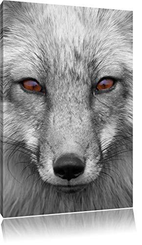 wunderschöner Fuchs im Portrait schwarz/weiß Format: 60x40 auf Leinwand, XXL riesige Bilder fertig gerahmt mit Keilrahmen, Kunstdruck auf Wandbild mit Rahmen, günstiger als Gemälde oder Ölbild, kein Poster oder Plakat