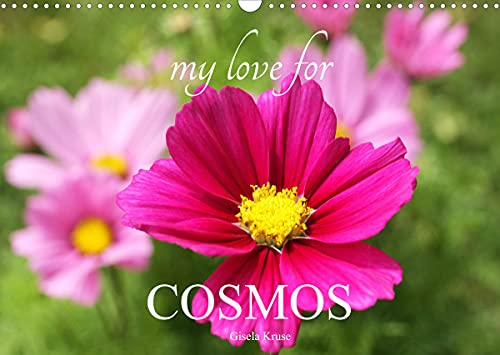 My Love for Cosmos (Wall Calendar 2022 DIN A3 Landscape)