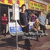 Songtexte von The Wallflowers - (Breach)