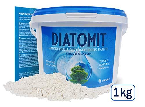 DIATOMIT Amorphe Kieselgur Diatomaceous Earth 1 kg Pulver höchste Lebensmittelqualität Food Grade Silicium für Haare Haut und Nägel – ohne Zusatzstoffe PERMA GUARD