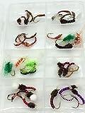 BestCity - Set de brújula para pesca con mosca, 40 moscas en tamaños 10 – 14