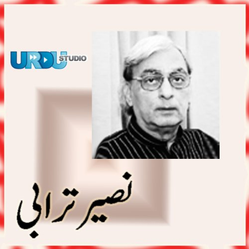 Selected Poetry (Naseer Turabi) cover art