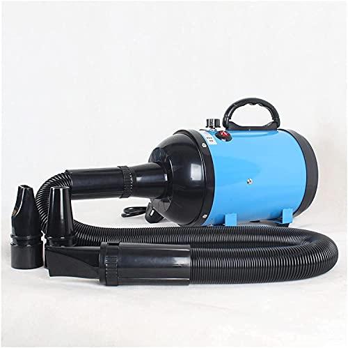 Pet Perro Cat Water STOWER STEPLESS Regulación de la Velocidad de la regulación de Dos temperaturas Secador de Pelo de la regresión del Perro 2800W (Color : Bule)