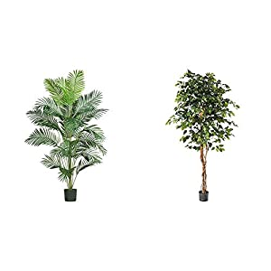 Silk Flower Arrangements Nearly Natural 5261 7ft. Paradise Palm,Green & 6ft. Ficus Artificial Trees, 72in, Green