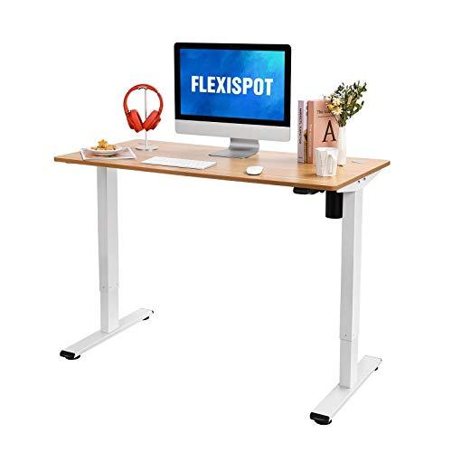 FLEXISPOT 電動式昇降デスク EG1-Light(幅120×奥行60,軽さ重視)パソコンデスク 人間工学 スタンディング...