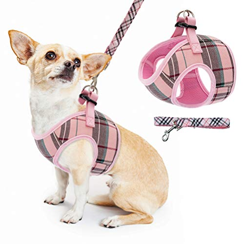 Soft Mesh Small Dog Harness with Leash - Basic Plaid Padded Chest Vest for Kitties,Puppy,Small Pets