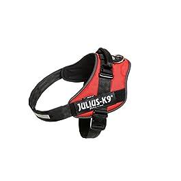Julius-K9, 16IDC-R-3, IDC Powerharness, dog harness, Size: 2XL/3, Red