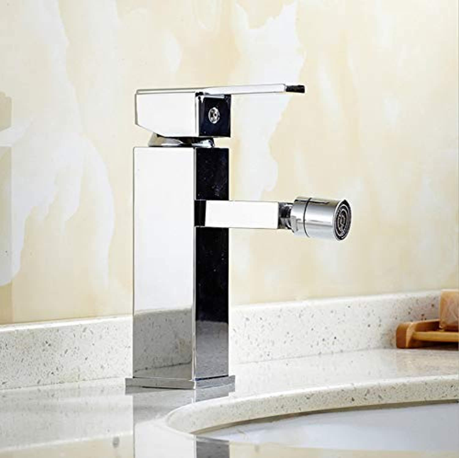 360° redatable Modern Faucetbasin Faucet Single Hole Single Handle Single Hole Hot and Cold Bidet Faucet