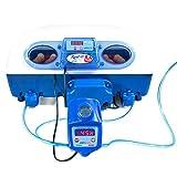 Borotto Real 49 Plus Expert - Incubatrice Automatica Professionale Brevettata, Materiale Termoisolante con Antibatterico, con Umidificatore Automatico Sirio - per 49 Uova o 196 Uova Piccole