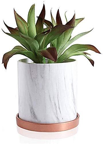 Maceta de cerámica de mármol blanco, cactus, maceta suculenta, jardín, maceta con bandeja de drenaje de mármol de cerámica para flores bonsái, color: grande y simple de cerámica