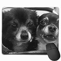 かわいい子犬 黒と白の写真 マウスパッド 運びやすい オフィス 家 最適 おしゃれ 耐久性 滑り止めゴム底付き 快適操作性 30*25*0.3cm