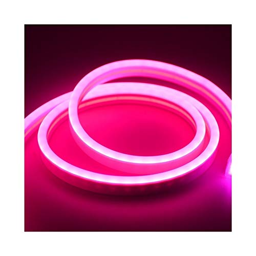CHUNMA 6mm Reduzca la luz de neón 12V tira LED SMD 2835 120leds / M del tubo flexible de la cuerda a prueba de agua for el bricolaje día de fiesta de la decoración de la Luz (Color : Red)