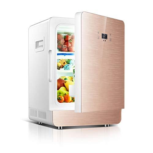 LIXUDECO Mini Nevera 20L Refrigerador de Coche 12V 220V Caja de Doble Uso del automóvil Refrigerador Mini Dormitorio portátil Apartamento Caja refrigerada (Color Name : Gold)
