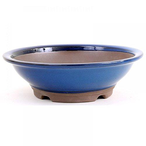 Bonsaï – Bol rond diamètre 24,5 x 7,5 cm Bleu 30026