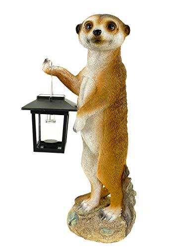 Kremers Schatzkiste Erdmännchen Eddy stehend mit Solarlaterne Figur Gartenfigur 38 cm Meercat Tierfigur