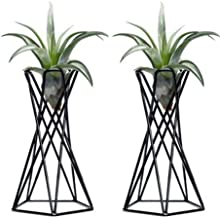 Tabletop Metal Big Air Plant Holders Big Air Plant Stands Air Plant Containers Air Plant Racks Tillandsia Stands Tillandsia Holders Tillandsia Racks (Black)