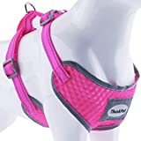 ThinkPet Reflective Breathable Soft Air Mesh No Pull Puppy Choke Free Over Head Vest Ventilation Harness for Puppy Small Medium Dogs and Cats Neon Rosary Neck 6-9 in/Chest 10-13 in