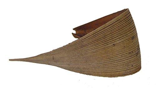 Kokosblatt medium Galera | Palmen Blatt | Kokosschale | Dekoblatt| Dekoschale