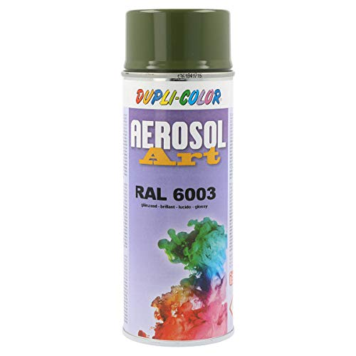 Duplicolor 787843 Aerosol Art RAL 6003 Brillant 400ml