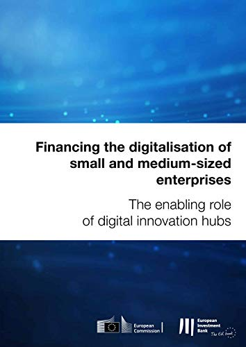Financing the digitalisation of small and medium-sized enterprises: The enabling role of digital innovation hubs (English Edition)