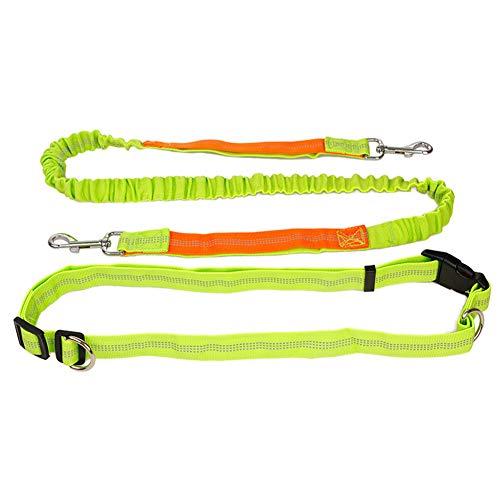 Handsfree Hond Lood Hondenriem Hond Lood Riem Hondenriem Voor Kleine Honden Hond Running Lood Taille Hond Lood Slip Lead Voor Honden green