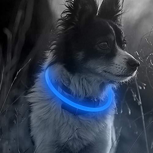 A/A EnShiShiDaNingZiShangMaoYouXianGon - Collar con LED para perro con carga USB, seguridad nocturna