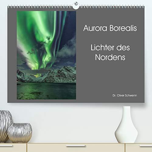 Aurora Borealis - Lichter des Nordens (Premium, hochwertiger DIN A2 Wandkalender 2021, Kunstdruck in Hochglanz)