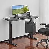 Eureka Ergonomic 48 inch Standing Desk, Electric Height Adjustable Computer Desk Home Office Sit to Stand Desk, Black