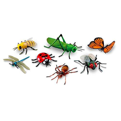 Learning Resources Jumbo Insects I Fly Ant Bee Ladybug Grasshopper Butterfly Dragonfly 7 InsectsMulticolor8 L x 5 W in