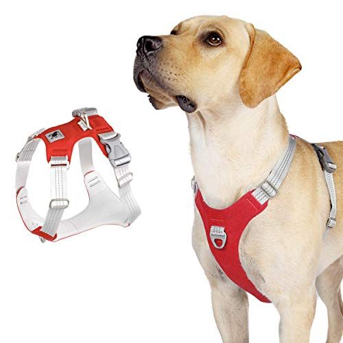 ACKERPET No Pull Dog Harness, Reflective Small Puppy Harness, Adjustable Pet Vest with Metal D Ring, Easy Walk Dog Vest Harness for Small Medium Large Dogs, Comfort Fit No Choke (XL, Red)